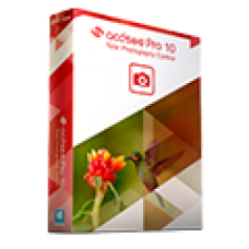 ACDSee Professional 10
